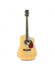 Pamel Guitar FG068C