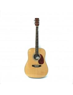 Pamel Guitar FG068