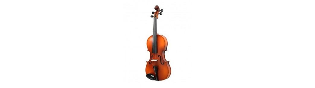 Magazinul de instrumente muzicale,viori si viole profesionale si pentru incepatori