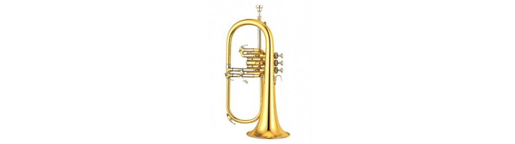 instrumente ,suflat,suceava ,botosani,neamt,iasi ,FAMFARE ,orchestre