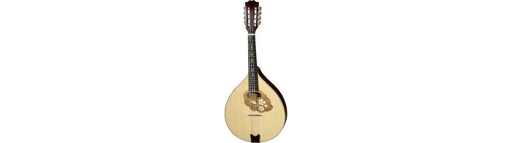 Expert Music - Magazinul de Instrumente muzicale -